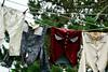 Hobbiton Clothes (PHOTOMAPE) Tags: 7dwf lordoftherings frodo hobbiton