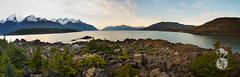 Haines Chilkat State Park panorama (Storm'sEndPhoto) Tags: 2017 anselsiegenthaler stormsendphotography stormsendphoto akstateparks alaskastateparks autopanogigapro chlkatstatepark epic nikon nikonphotography ocean panorama seacoast statepark public lands