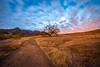 Epic High Res Malibu Canyons Malibu Creek State Park Landscape Sunset! California Socal Photography! Fine Art Nature Photos: Elliot McGucken Fine Art! Stormy Skies! Red & Orang! Wide Angle Nikon Nikkor Nikon AF-S NIKKOR 14-24mm f/2.8G ED (45SURF Hero's Odyssey Mythology Landscapes & Godde) Tags: epic high res malibu canyons creek state park landscape sunset california socal photography fine art nature photos elliot mcgucken stormy skies red orang wide angle nikon nikkor afs 1424mm f28g ed