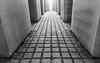 Alienation (genf) Tags: holocaust memorial berlin berlijn beton concrete blocks blokken road pad path duitsland deutschland light day licht daglicht black white zwart wit grijs grey gray sony a99ii outdoor