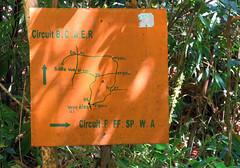 Trail Map (LeftCoastKenny) Tags: madagascar day7 ranomafananationalpark sign text drawing trees