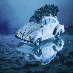 December Rain (tanyalinskey) Tags: december small raindrops car creation flickrfriday decemberrain