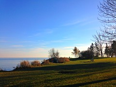 """""""The pleasure which we most rarely experience gives us greatest delight.""""  - Epictetus (Trinimusic2008 -blessings) Tags: trinimusic2008 judymeikle nature bench hbm november 2017 shadows humberbayparkw toronto to ontario canada iphone sky trees grass lighthouse candid"""
