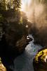 Athabasca canyon (Myles Pinkney Photography) Tags: dslr nikond5300 tokina1116 landscapephotgraphy jaspernationalpark jasper canada canyon waterfall rapids sunrise light golden trees mist spray atmosphere perspective