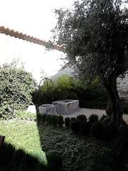 Antezana Hospital, founded 1483, Grounds, Alcala de Henares , Madrid (d.kevan) Tags: spain madrid alcaladehenares hospitaldeantezana walls plants 1483 wells trees olivetrees troughs grass parksandgardens