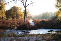 autumn with landscape the river (partis90) Tags: leica m8 20 color landscape photography voigtlander superwide heliar 15mm 40 farbe