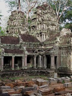 Ta Prohm temples (Cambodia)