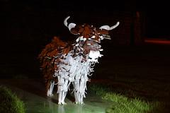 Heilen Coo Calf (steve_whitmarsh) Tags: statue metal night lights sculpture cow aberdeenshire scotland