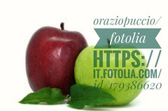 File Link: https://it.fotolia.com/id/179386620 #microstock #marketing #webdesign #design #WebContent #SEO #csstemplates #css #HTML5 #Websites #web20k #web2015 #web #social #branding #oraziopuccio #socialmedia #business #discount #travel #smallbiz #success (oraziopuccio) Tags: oraziopuccio webcontent discount website branding csstemplates webdesign marketing seo microstock css business html5 web2015 socialmedia websites smallbiz social web success travel web20k design apples apple red green
