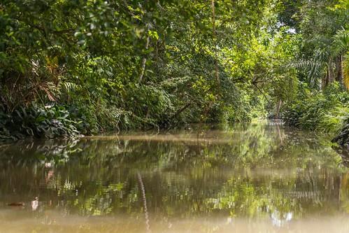 grotte khao kob trang - thailande 4