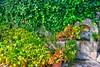 Pueblo de Hecho (Huesca- Pirineos-España) (Carlos M. M.) Tags: huesca aragón pirineos hdr sony sonyalpha6000 garden jardín