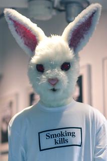 Smoking kills bunny
