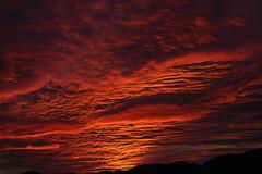 Sunset 11 17 2017 032 (Az Skies Photography) Tags: sun sky skyline skyscape arizona az arizonasky arizonaskyline arizonaskyscape november 17 2017 november172017 111717 11172017 cloud clouds red orange yellow gold golden salmon black canon eos 80d canoneos80d eos80d canon80d set sunset dusk twilight nightfall arizonasunrise casa grande casagrande casagrandeaz