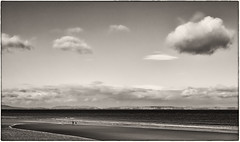 'On the Beach' (Canadapt) Tags: beach clouds people family morayfirth sea water sand point bw findhorn scotland canadapt dog