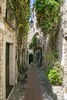 20170718-BB8A1987 (chrischampion2) Tags: cotedazur france frenchriviera mediterranean eze ezevillage village villageperche stone buildings stonebuildings jardin jardinexotique sea trees flowers cliff riviera eastofnice nice alley alleys steep hilly
