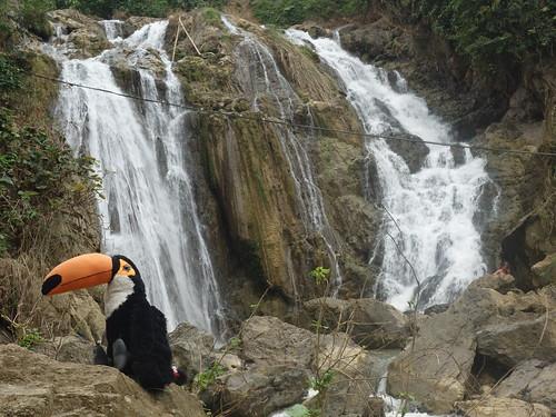 Pelico aussi a profité de la vue sur les cascades