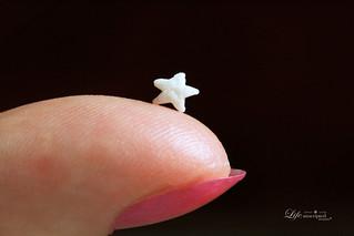 11-13-17 - Fingertip