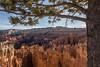 Sunset Point (devrieda) Tags: utah brycecanyon bryce