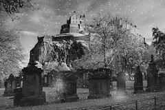 Edinburgh at Christmas (WISEBUYS21) Tags: christmas xmas scene edinburgh castle winter snow graveyard grave stone graves trees cliff cliffs tree blizzard wonderful life city citycentre wisebuys21 card scotland cold grey blue skies new year advent grass flake flakes below bottom end arthurs seat cannon merry happy have all best 6th november 2017 06112017