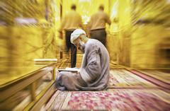 Iran - Septembre 2017 (Tangible Huitsu) Tags: iran perse persan persepolis iranian asia asie moyenorient middleeast orient oriental people shiraz chiraz mosquee mosque