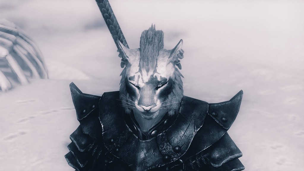 The World's newest photos of khajiit and skyrim - Flickr