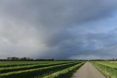 Zeeuws Vlaanderen (theo_vermeulen) Tags: zeeuwsvlaanderen zeeland landscape shower autumn herfst