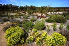 Cranbourne RBG Nov 2017 077 (Graeme Butler) Tags: water landscape history gardens australianplants architecture victoria australia