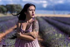 Saray - 1/6 (Pogdorica) Tags: modelo sesion retrato posado chica campo lavanda brihuega saray tattoo