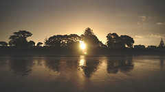 behind (Paul J's) Tags: landscape coastal sunset auckland orewa orewabeach hibiscuscoast whangaparaoapeninsula beach trees silhouette