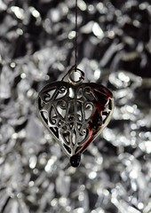 Bleeding Heart (Rob Singfield) Tags: heart blood jewellery surreal kemnay aberdeenshire scotland macro macromondays