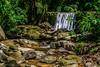 Queda D'água (plinioleal) Tags: wood wideangle nikon d5300 sigma nature water parquenacional longexposure forrest sigma1750 floresta park natureza parque green florestadatijuca nationalpark wide woods