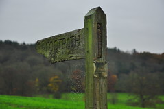 Pointing the way (Nick White2009) Tags: signpost sign footpath field grass green trees autumn moss rural countryside england uk britain hampshire way downs south idsworth walk cobweb wood