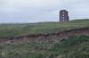 Viola site, La Hinc.h McNamara ruin (Mary Gillham Archive Project) Tags: 17713 countyclare ireland lahinch mountainpansy planttree violalutea