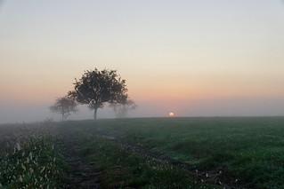 A l'aube d'un nouveau jour