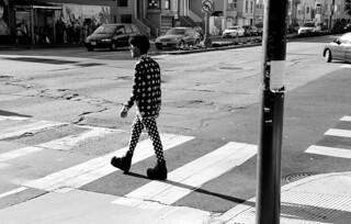 Fashionista Crossing