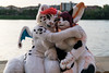 _DSC0850 (Kiba Wolf) Tags: dvc dreamvisioncreation snep snow leopard dragon ac2017