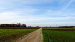 Zwischen den Feldern (johannroehrle) Tags: landscape landschaft wolken herbst himmel felder feldweg jeseň jesień krajobraz autumn automne autunno sony clouds chmury bayern regensburg germany gras green