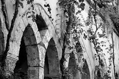 Sorrente - Cloître San Francesco - (Noir et Blanc 19) Tags: sorrente italie cloître églises nb bw noiretblanc sony a77