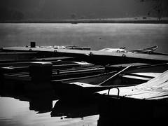 Meerfelder Maar - Eifel (PHOTOGRAPHY Toporowski) Tags: blackwhite contrast bw sw wasser nature water schwarzweis herbst natur landschaft landscape autumn kontrast eschweiler nrwnordrheinwestfalen deutschland deu