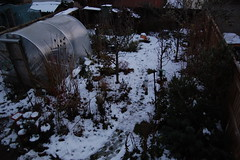 Looking Down on the Back Garden - December 2017 (basswulf) Tags: backgarden polytunnel d40 1855mmf3556g lenstagged unmodified 32 image:ratio=32 permissions:licence=c 20171212 201712 3008x2000 garden normcres oxford england uk snow lookingdownonthegarden