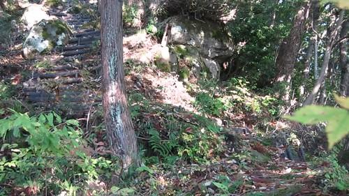 ridgetop near Awatabe near Gyoji-ga-dake peak