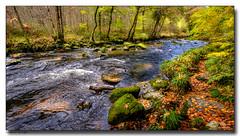 Autumn-on-The-Teign (jeremy willcocks) Tags: riverteign dartmoor devon colour landscape river water autumn woods jeremywillcocks wwwsouthwestscenesmeuk fujixpro2 xf1024mm uk