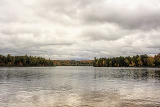 Loons at Fish Creek Ponds 02