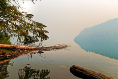 Sunrise at Cheakamus Lake, Whistler Canada (jan_2j) Tags: canada k1 pentax whistler chekamuslake rainforest