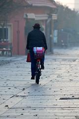Őszi reggel (vegeta25) Tags: autumn foggy fog bicycle kerékpározik kerékpározás bicikli biciklizés ősz streetphoto street utca outdoor kint bike cold morning hideg road myfuji