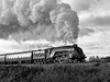 ELR-No9-123 (Dreaming of Steam) Tags: 60009 a4 br britishrailways elr eastlancsrailway gresley gresleysteamengine heritage heritagerailways no926 railway steam steamengine streak streamlined train unionofsouthafrica vintage engine locomotive pacific railroad smoke steamlocomotive
