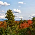 The Wild Center - New York - Adirondacks Mountains  - Natural HIstory Museum - Tupper Lake -  USA National Park thumbnail