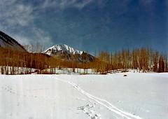 My Life In 1976 (pam's pics-) Tags: crestedbuttecolorado ohbejoyful skiing ski crosscountryskiing winter co colorado nature natural 1977 outdoors pamspics pammorris alongtimeago sports