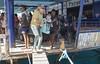 1104_03a (KnyazevDA) Tags: disability disabled diver diving deptherapy undersea padi underwater owd redsea buddy handicapped aowd egypt sea wheelchair travel amputee paraplegia paraplegic