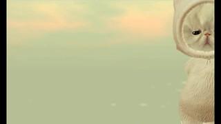 嵐 画像69